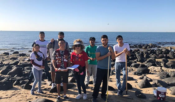 Volunteer citizens doing beach cleaning