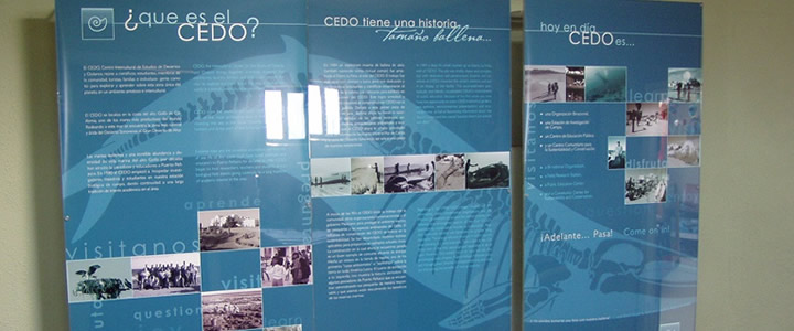 CEDO Exhibition Hall